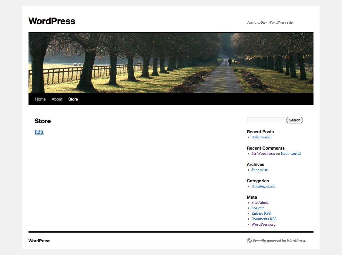 Screenshot: No products displayed in the WordPress theme